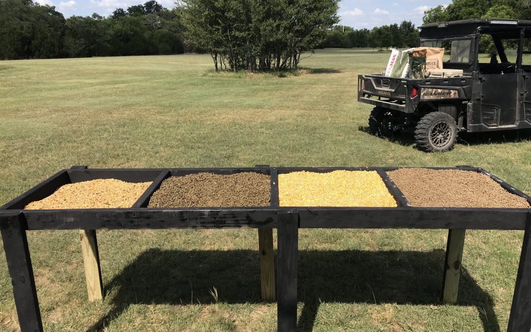 The DIY Feed Bandit Feed Testing Trough