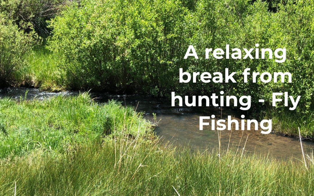 A relaxing break from hunting – Fly Fishing