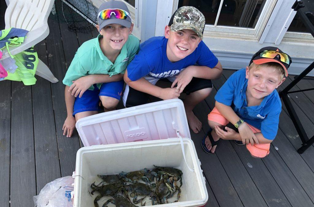 Coastal crabbing, public hunting draws & a snake bite