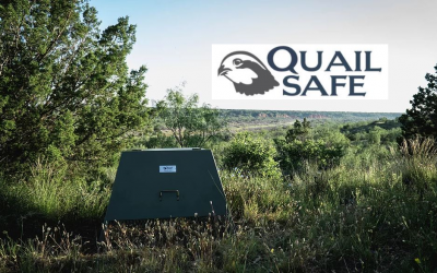Quail Safe with Ron Kendall, Jr.