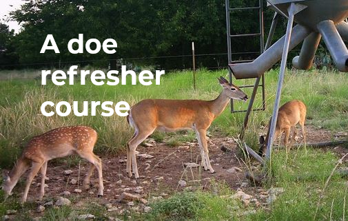 A doe refresher course